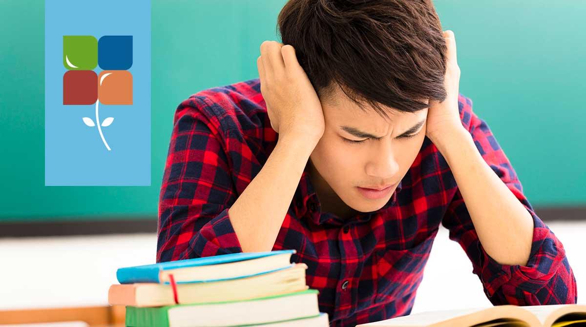 exam-stress-site